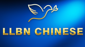LLBN Chinese